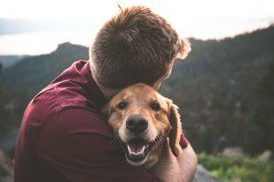 International Day Of Friendship happy dog