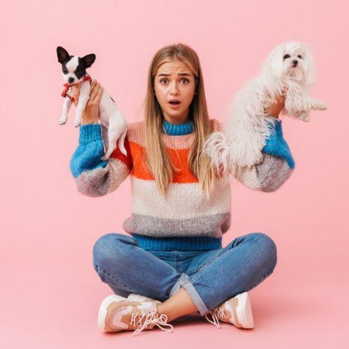 girl choosing a puppy