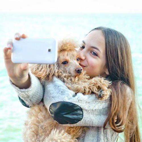 dog Instagram rich list