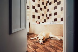 owner share bathroom with pet