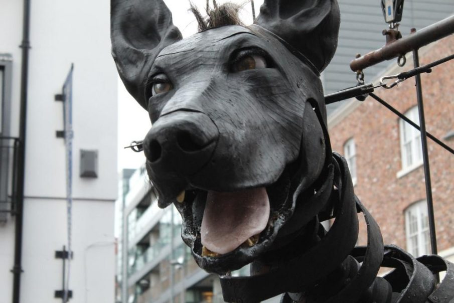 Liverpool dog friendly puppet
